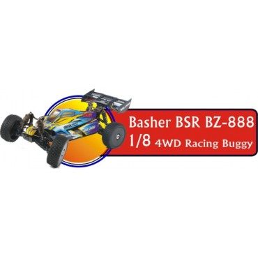 Basher BSR BZ-888 1/8 4WD Racing Buggy (3)
