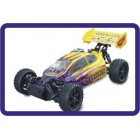 SWORDFISH 4WD Off-Road Buggy RTR