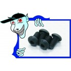 M5*10 Screws (4pcs) - A3015