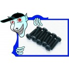 BM3*12 Screws (10pcs) - A3015