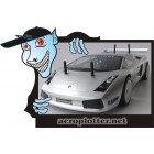 AUTOMODELO  1:10 RC GP .15 Engine 4WD RTR Lamborghini Racing Car