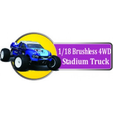 1/18 Brushless 4WD Stadium Truck  (11)