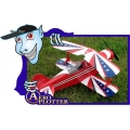 AEROMODELO PITT´S  SKYLANE ARF31`` EM BALSA*